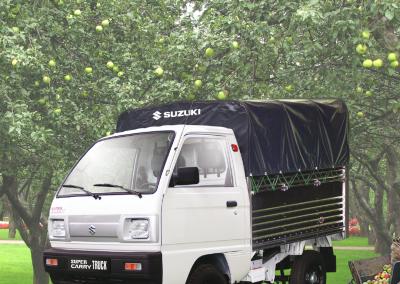 suzuki-carry-truck-vt (2)
